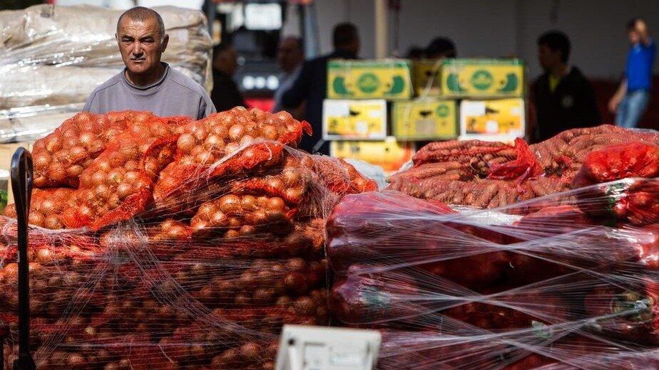 Алиханов объяснил высокую цену на морковь в Калининградской области   - Новости Калининграда | Фото: Александр Подгорчук